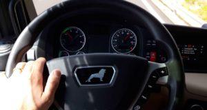 șoferii profesioniști începători