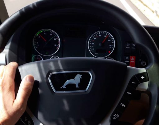 șofer profesionist